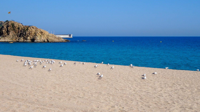 Пляж Бланеса