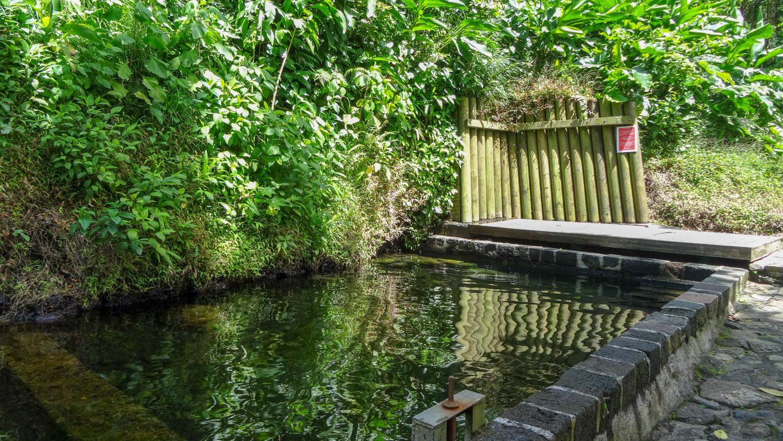 А на обратном пути можно искупаться в бассейне с термальной водой!