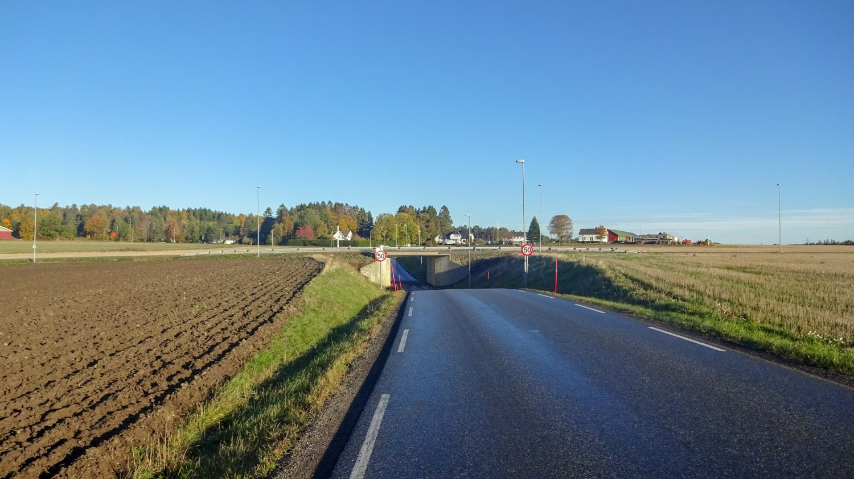 Идеальное шоссе вдоль полей