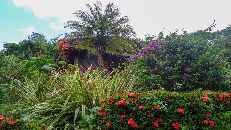 Рядом - небольшой, но очень симпатичный сад