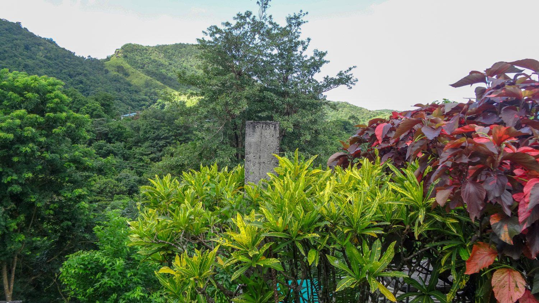 Вокруг - шикарная зелень или горы