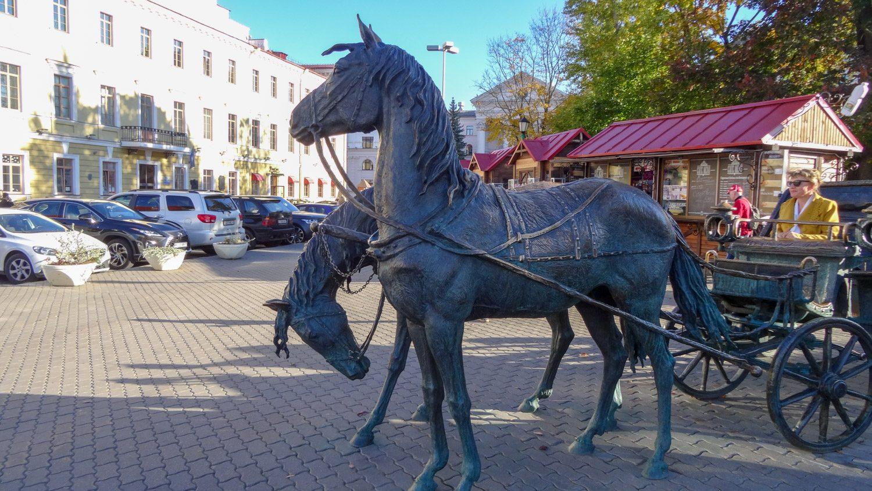 Чтобы сделать фото с лошадками, придется постоять в очереди