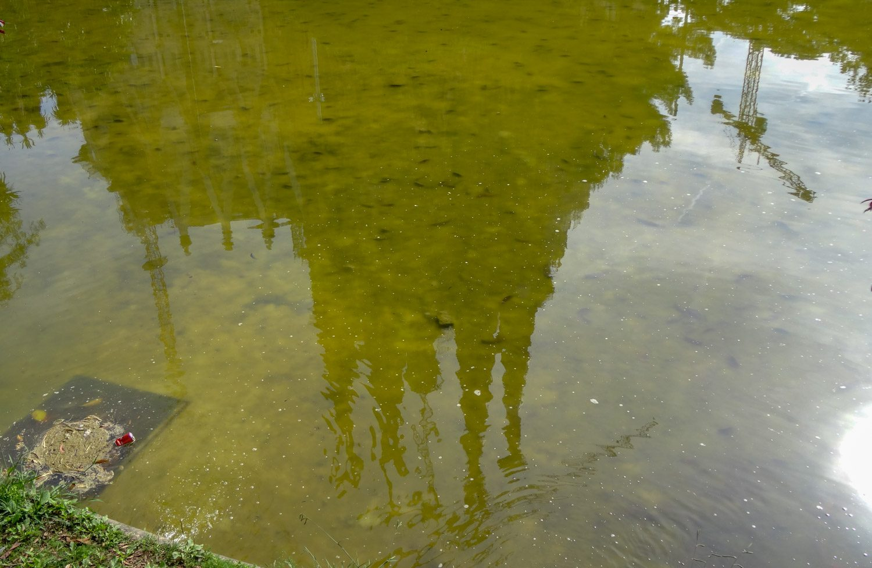 Я всегда хотела фотообои с Саградой. На моих она отражается в неком водоеме... Наконец-то его нашла