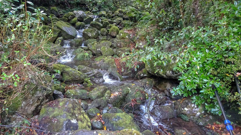 По дороге Caminho das Queimadas встречаются горные ручьи