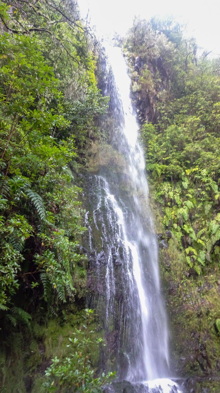 Водопад на тропе Levada do Caldeirão Verde