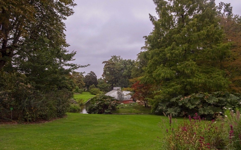 Просторный, зеленый, цветущий сад
