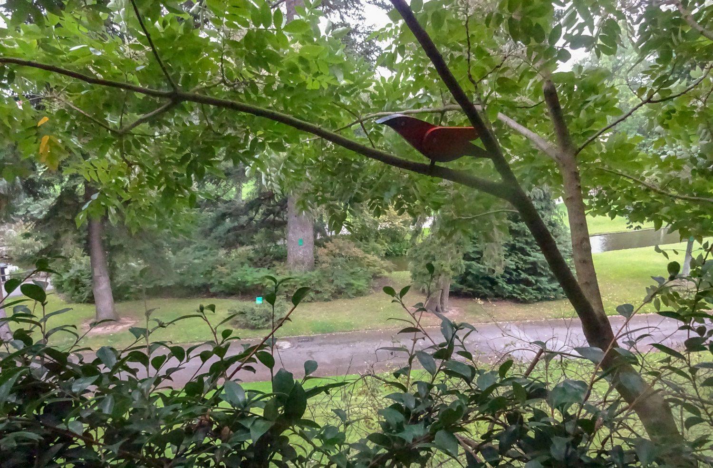 И птичка деревянная (забавно!)