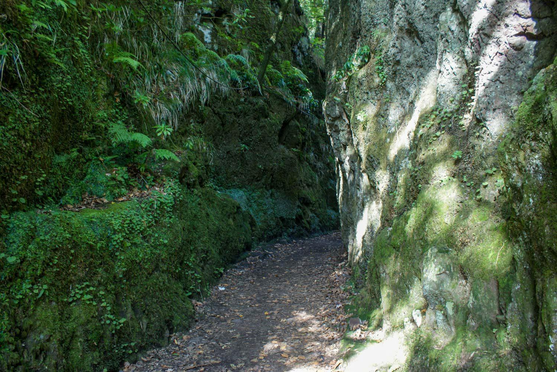 Небольшой тоннель