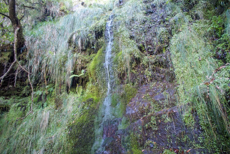 Водопад по пути