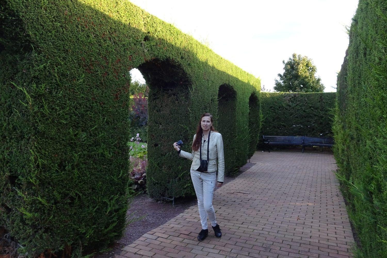 В Британском саду