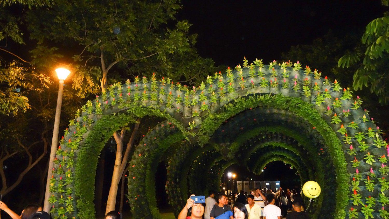 Тоннель из настоящих цветов