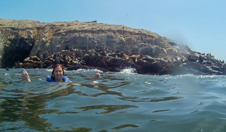 Сначала плавали довольно далеко, но потом рискнули подобраться