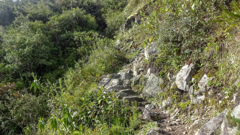 Каменная лесенка