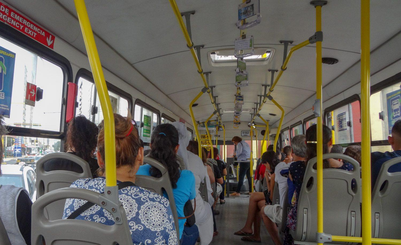 Автобусы обычные