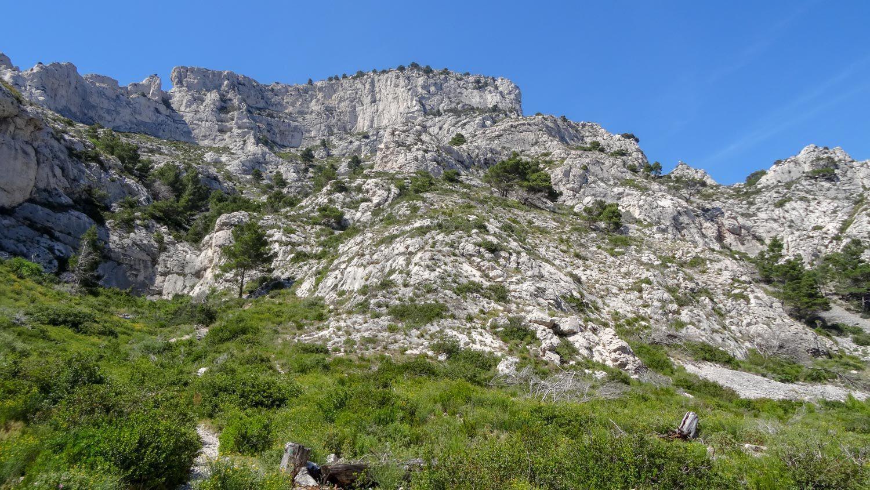 Высокие скалы, покрытые зеленью