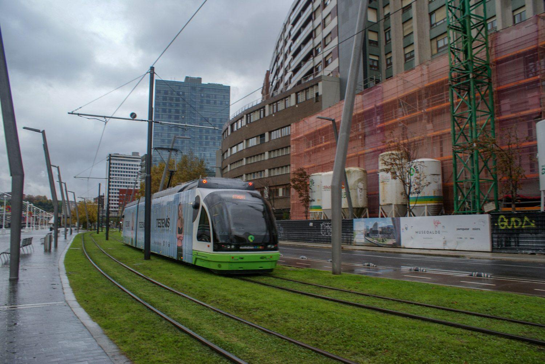 Травка вдоль трамвайных линий