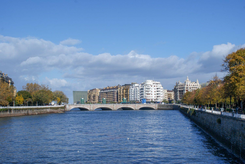 Мост и много уток