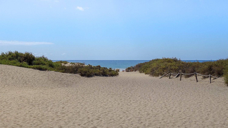 Неподалеку от дюн