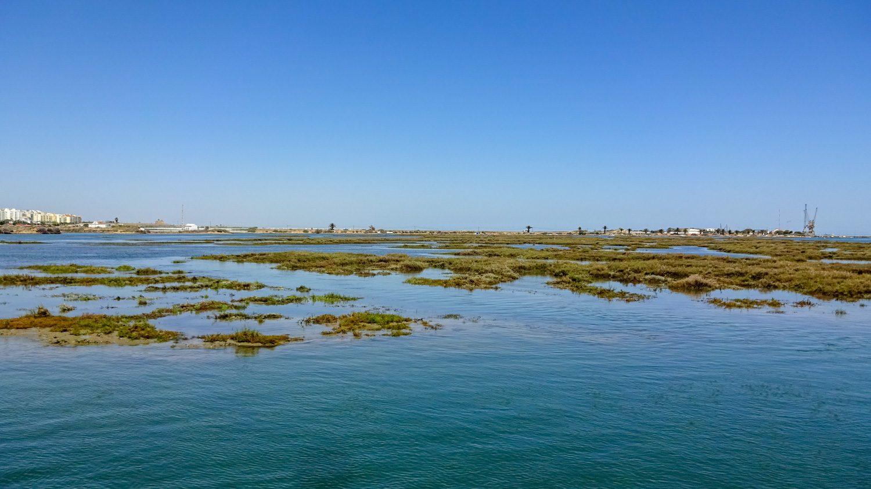Издалека похоже на болотце, но вода чистая