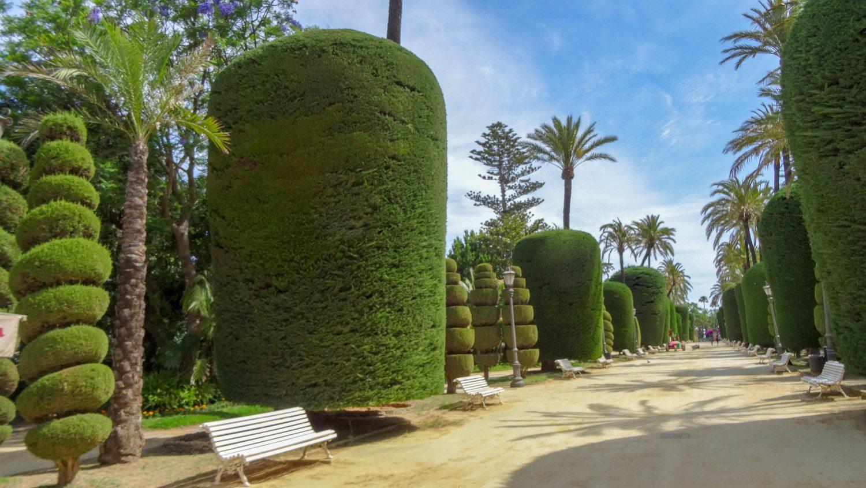 Чудесные зеленые фигуры в Генуэзском парке