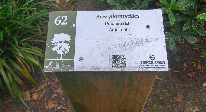 Таблички с названиями растений