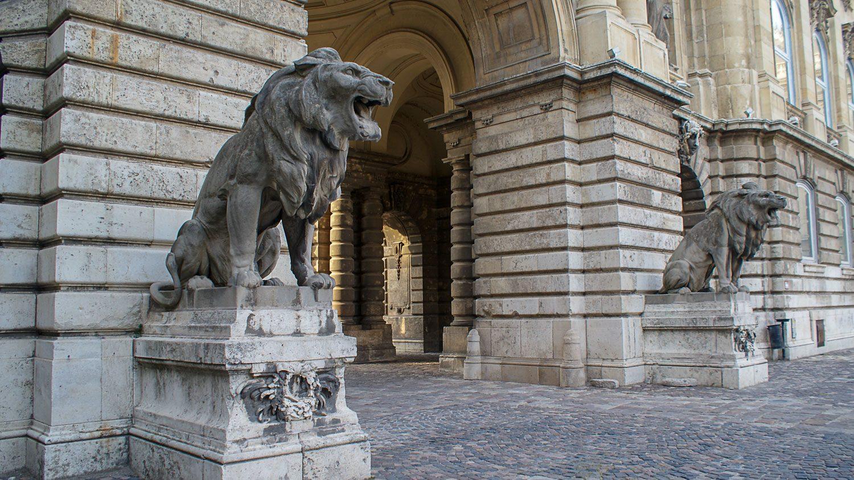 Львы-охранники