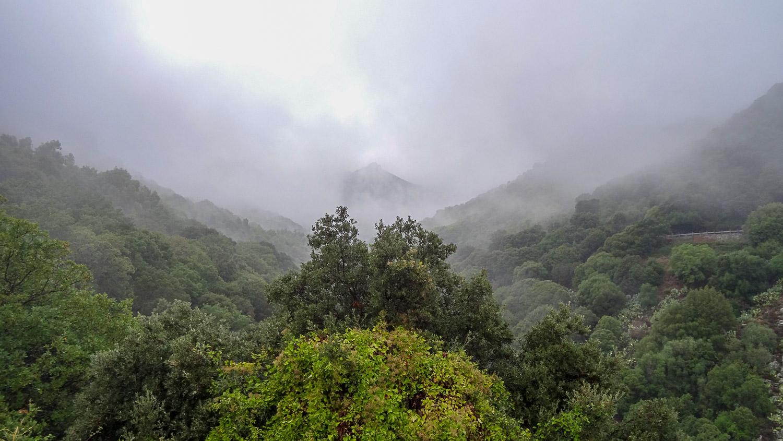 Дальние горы даже не видны