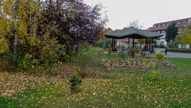 Ботанический сад с разнообразными растениями и беседкой для отдыха