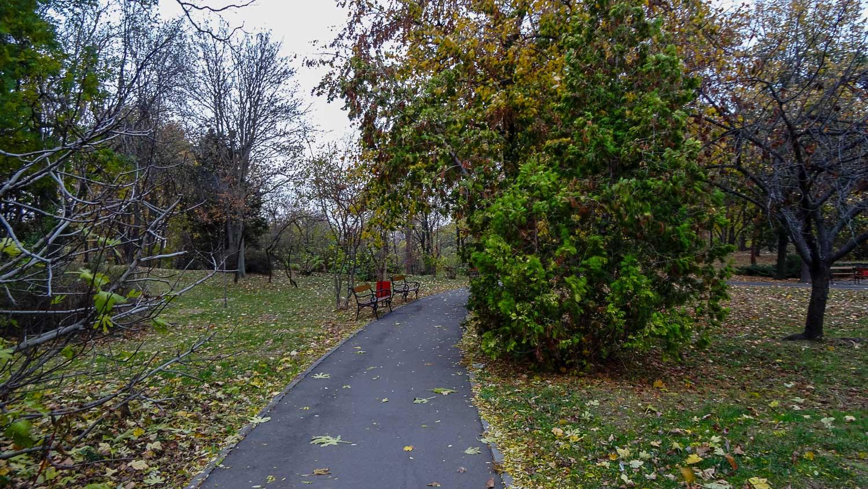 Тропинки в парке
