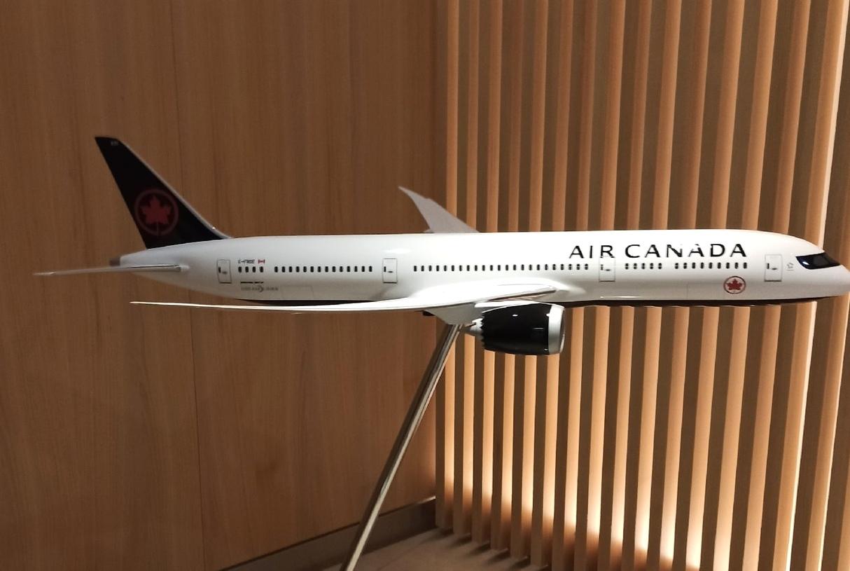 Макет самолета на входе