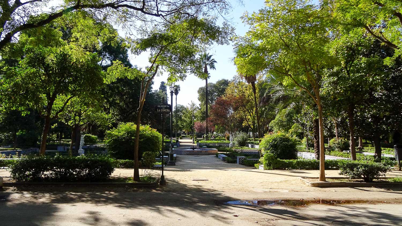 Парк огромный