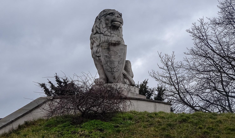 Один из львов у Люблинского замка