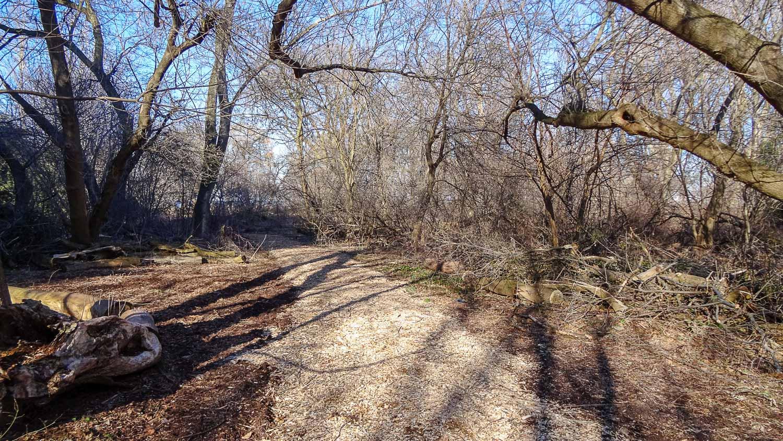 Pumphouse Side Trail