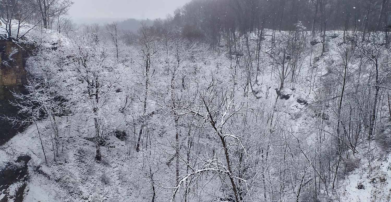 Чудесная зимняя природа