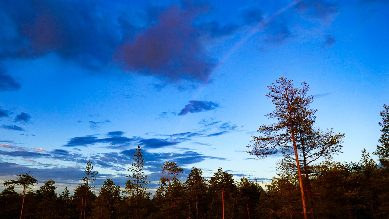 Вечер. Небо потрясающее