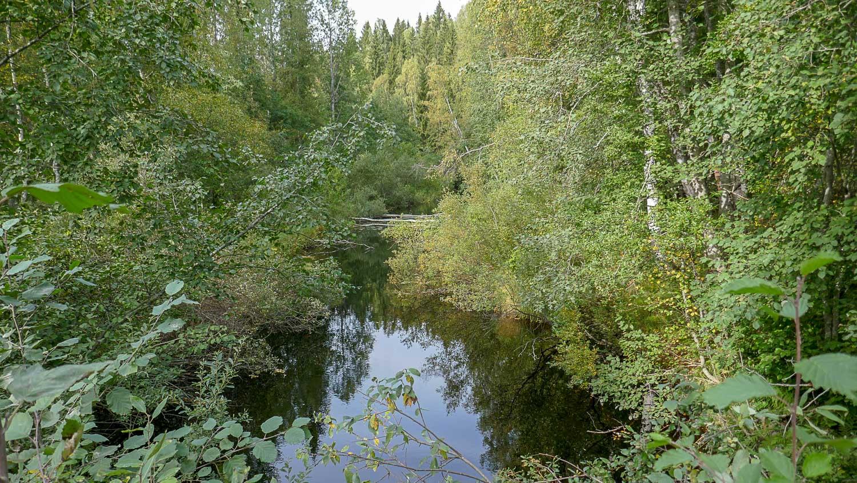 Река Хихнийоки