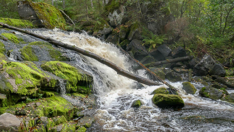 Водопад невысокий - около 4 м, но достаточно мощный