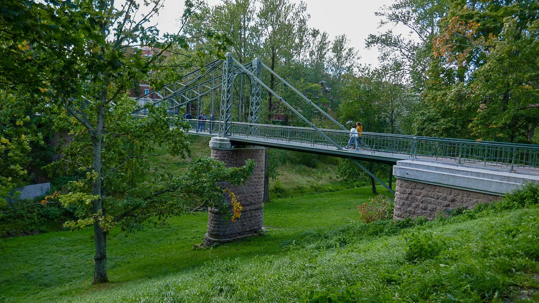 Макаровский мост в Овражном парке