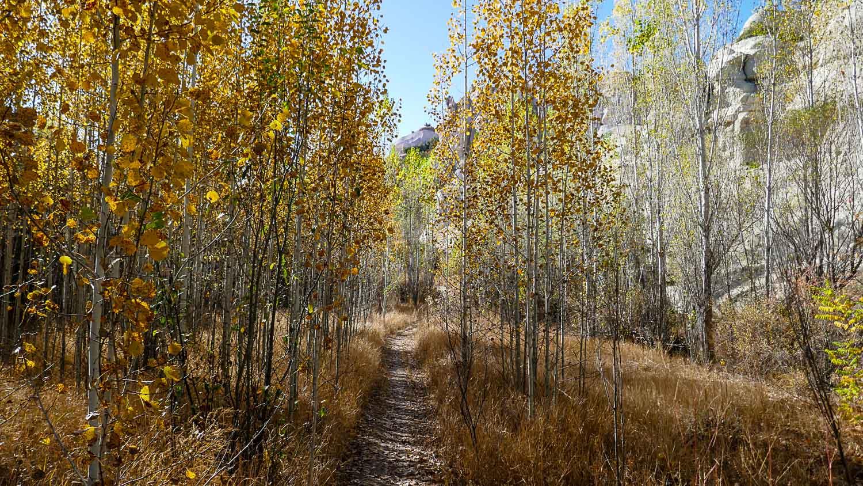 По пути в долину Бабарджик настоящий осенний лес