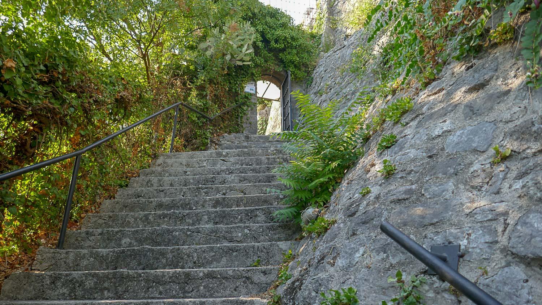 Много лестниц